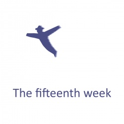 The fifteenth week