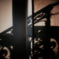 Chinese shadows, Paris, France