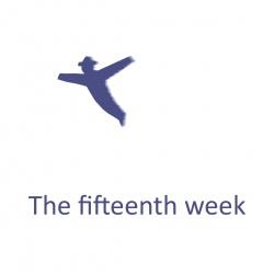 The fifteenth week
