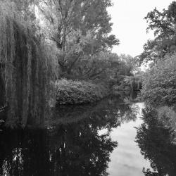 In the Tiergarten